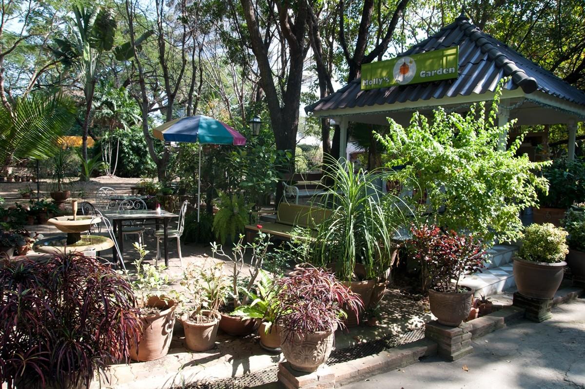 Hinlay's relaxing garden setting.